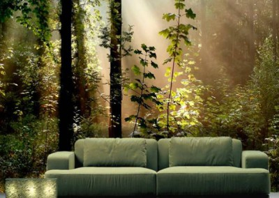 enchanted-forest-wallpaper-wp5805393