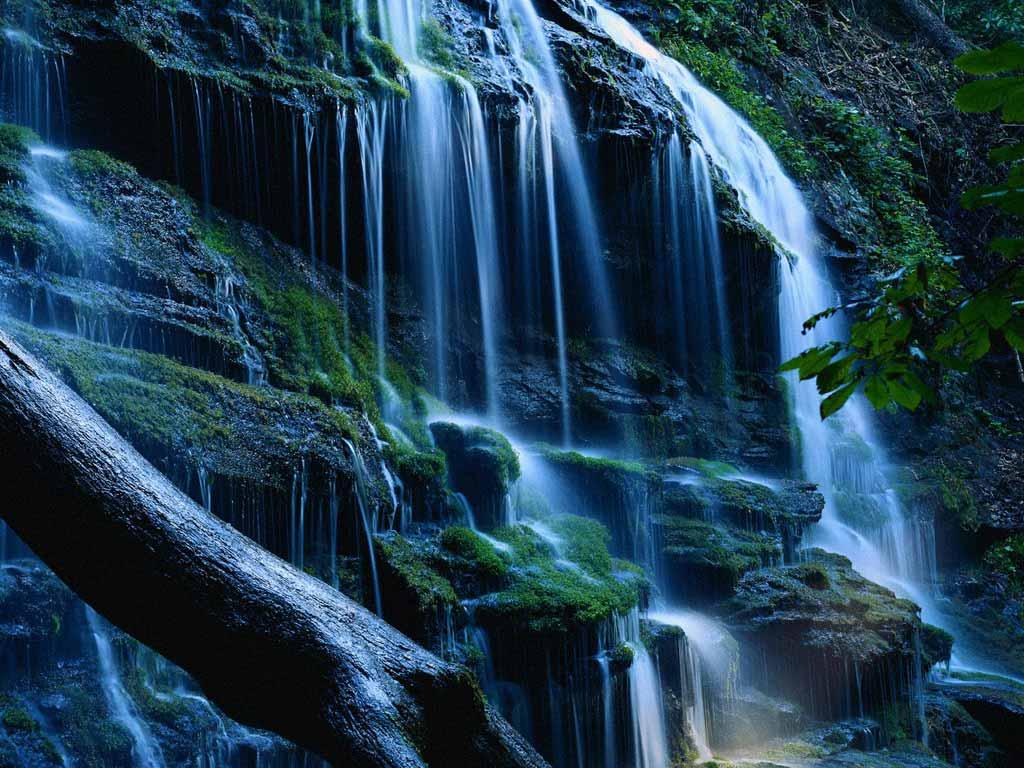 fall-of-life-nature-pics-wallpaper-wp425343-1