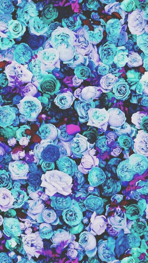 fccebdebefdb-blue-roses-pink-peonies-wallpaper-wp5002291