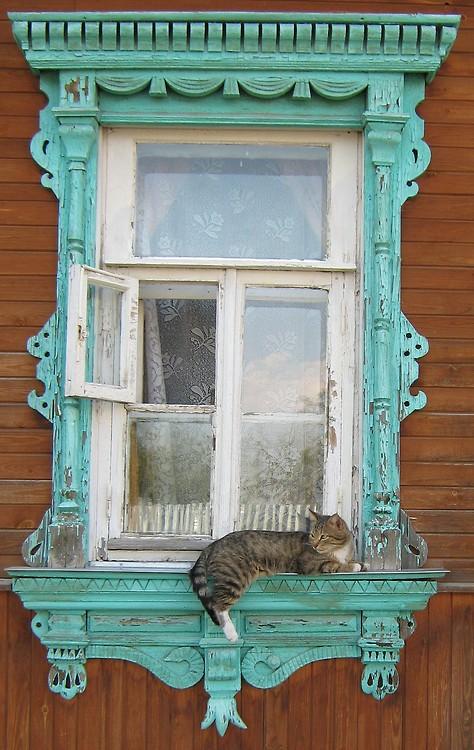 febefcefaeefdddfa-window-ledge-window-sill-wallpaper-wp5007382