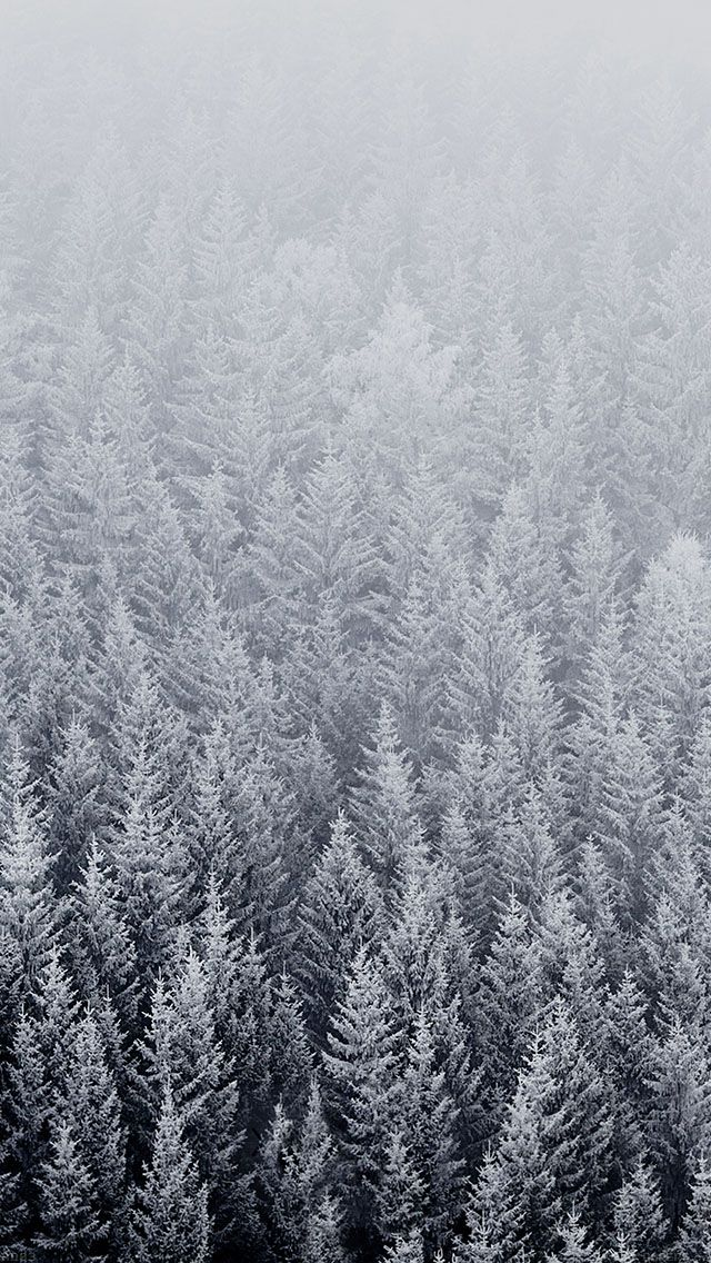iPhone-winter-wallpaper-wp426634