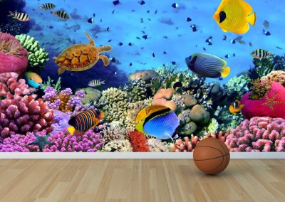 kids-aquarium-wallpaper-wp5807284