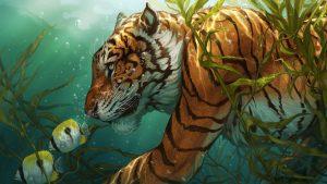 draak en tiger yin yang stuff wallpaper