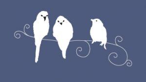 drie vogeltjes behang