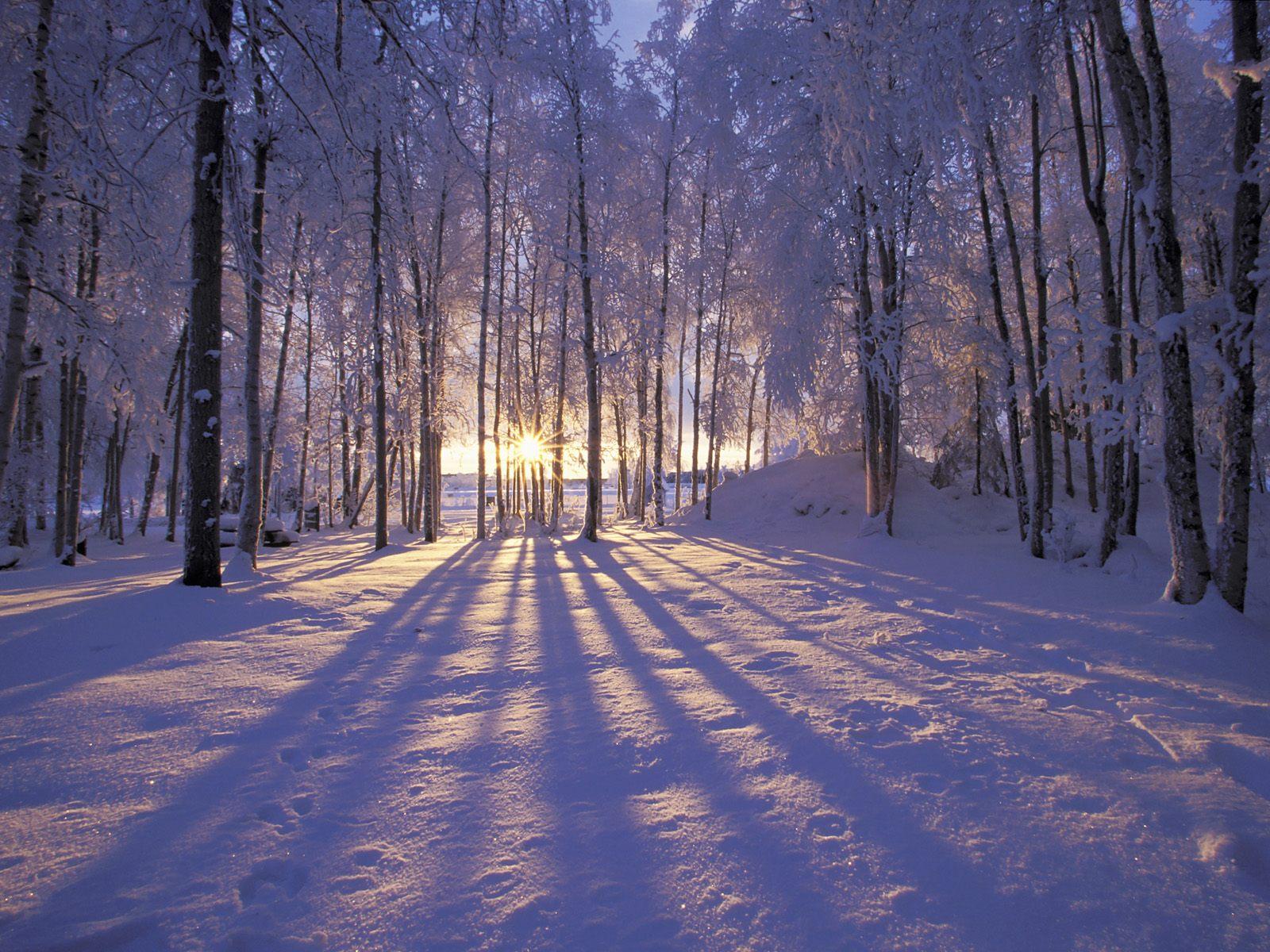 winter-Christmas-winter-wallpaper-wp4210707