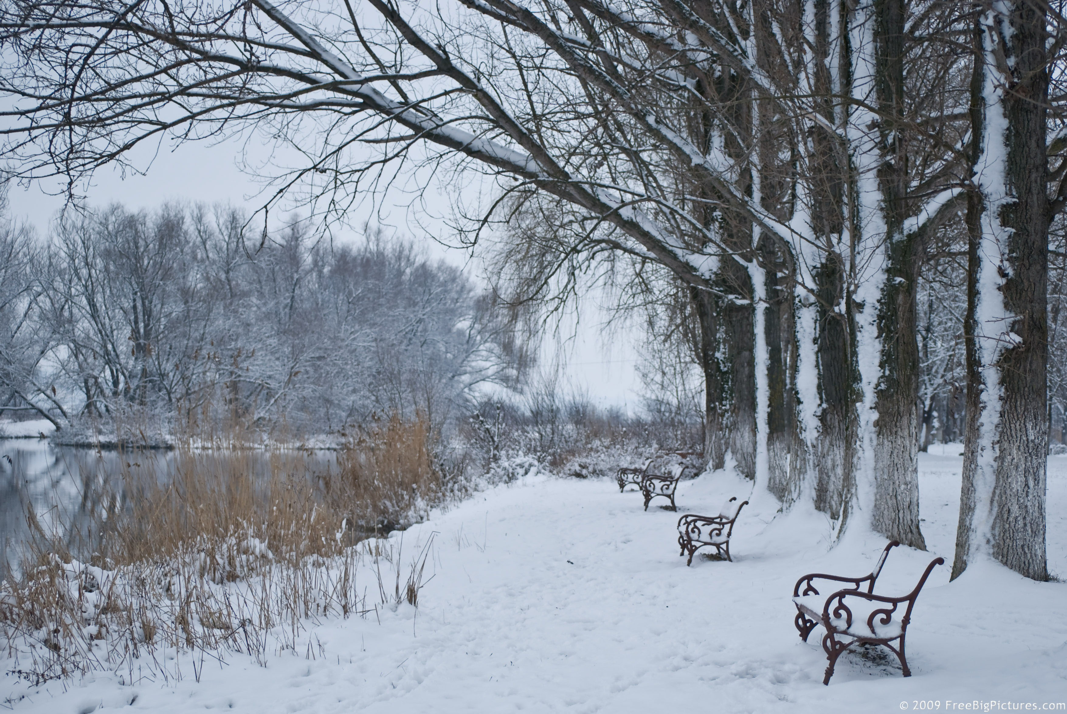 winter-High-Resolution-Winter-Pictures-Scene-is-a-charming-image-wallpaper-wp4210715