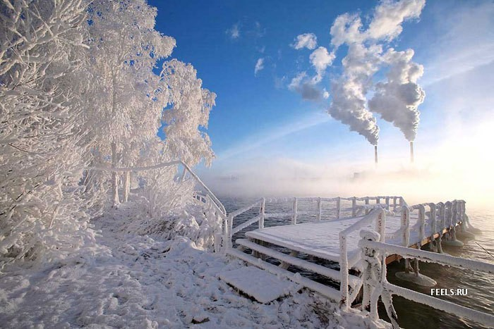 winter-It-s-amazing-how-beautiful-these-trees-are-in-the-snowy-Winter-The-wallpaper-wp4210719