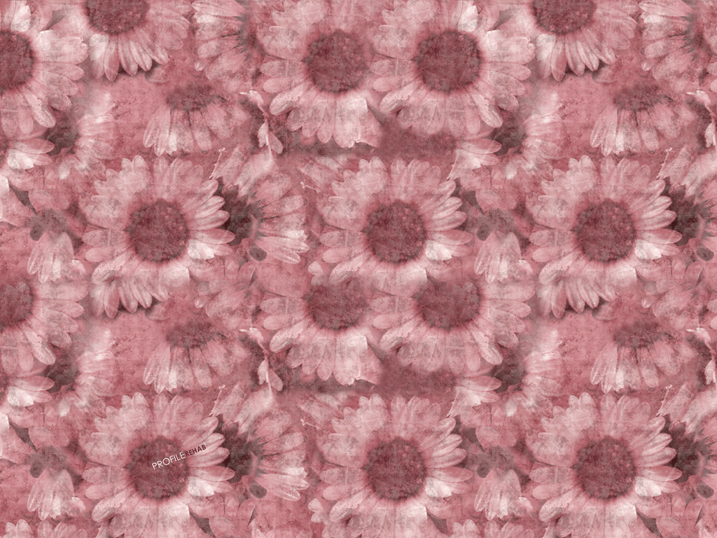 x-Pink-Flower-Pink-Sunflower-Background-Download-Profil-wallpaper-wp5802881-1
