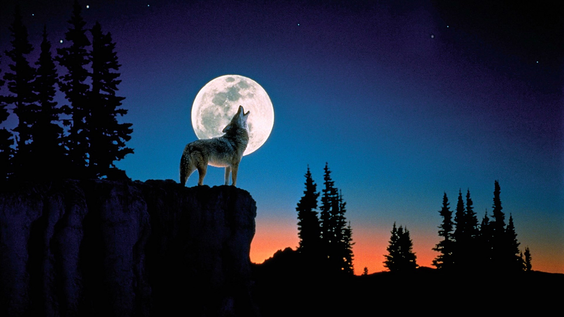 1920-x-1080px-wolf-and-moon-for-mac-computers-by-Travon-Longman-wallpaper-wpc580607