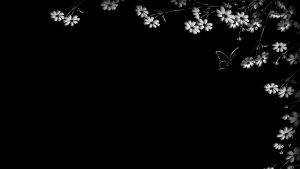 black and white flower wallpaper