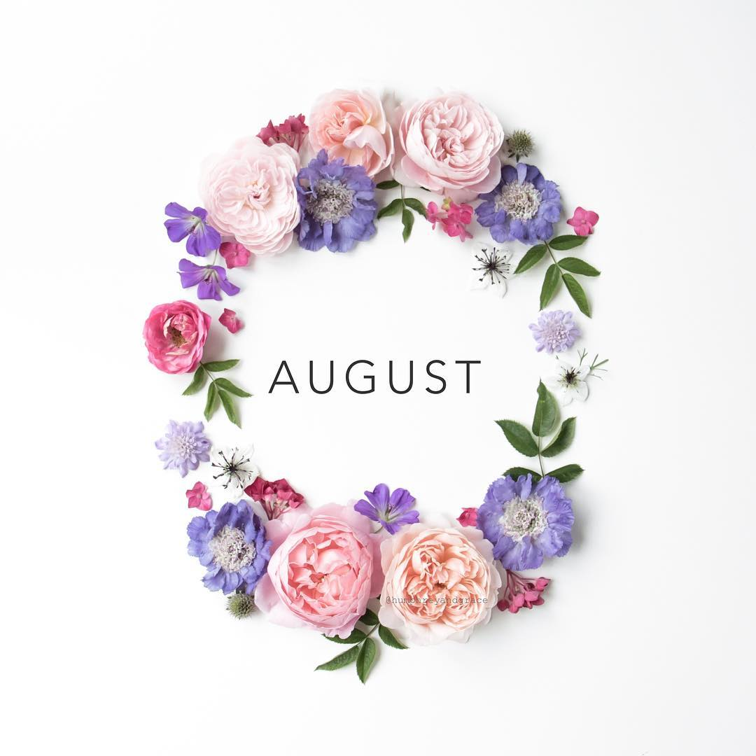 A-circle-of-flowers-Hello-August-by-humphreyandgrace-on-Instagram-wallpaper-wpc5801848