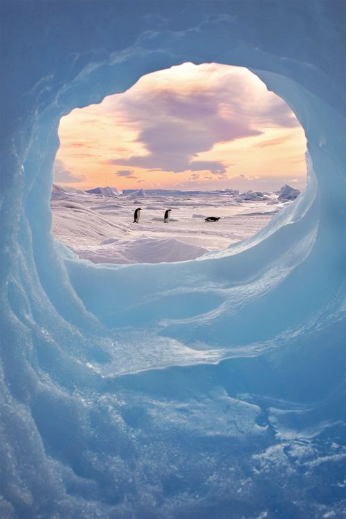 ANTARCTIC-PICTURE-FRAME-Photo-by-Keith-Szafranski-National-Geographic-Your-Shot-wallpaper-wpc9002283