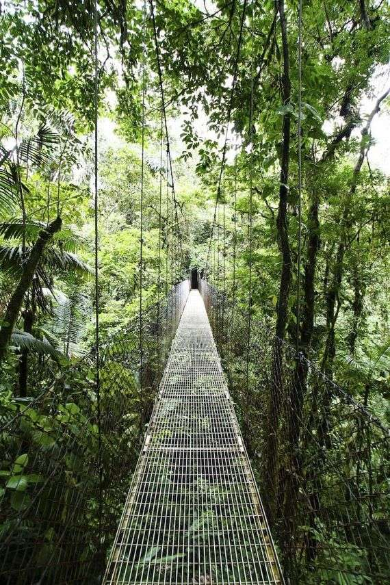 Arenal-Hanging-Bridges-Costa-Rica-A-three-kilometer-hike-through-the-Costa-Rican-rain-forest-Th-wallpaper-wpc5802238