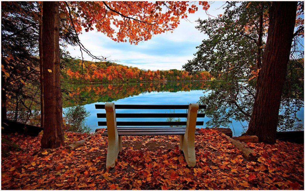 Autumn-Leaves-Bench-River-autumn-leaves-bench-river-desktop-autumn-leaves-bench-river-h-wallpaper-wpc5802379
