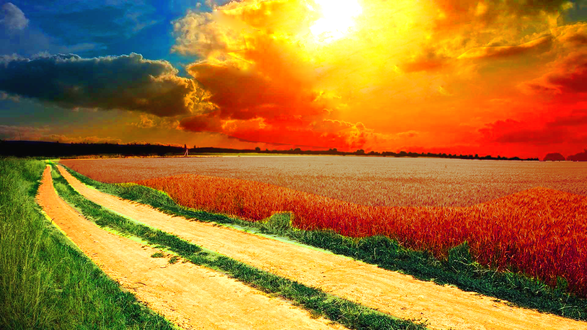 Awesome-Sunshine-from-the-Clouds-on-the-Wheat-Field-1920x1080-Need-iPhone-S-Plus-wallpaper-wpc5802419