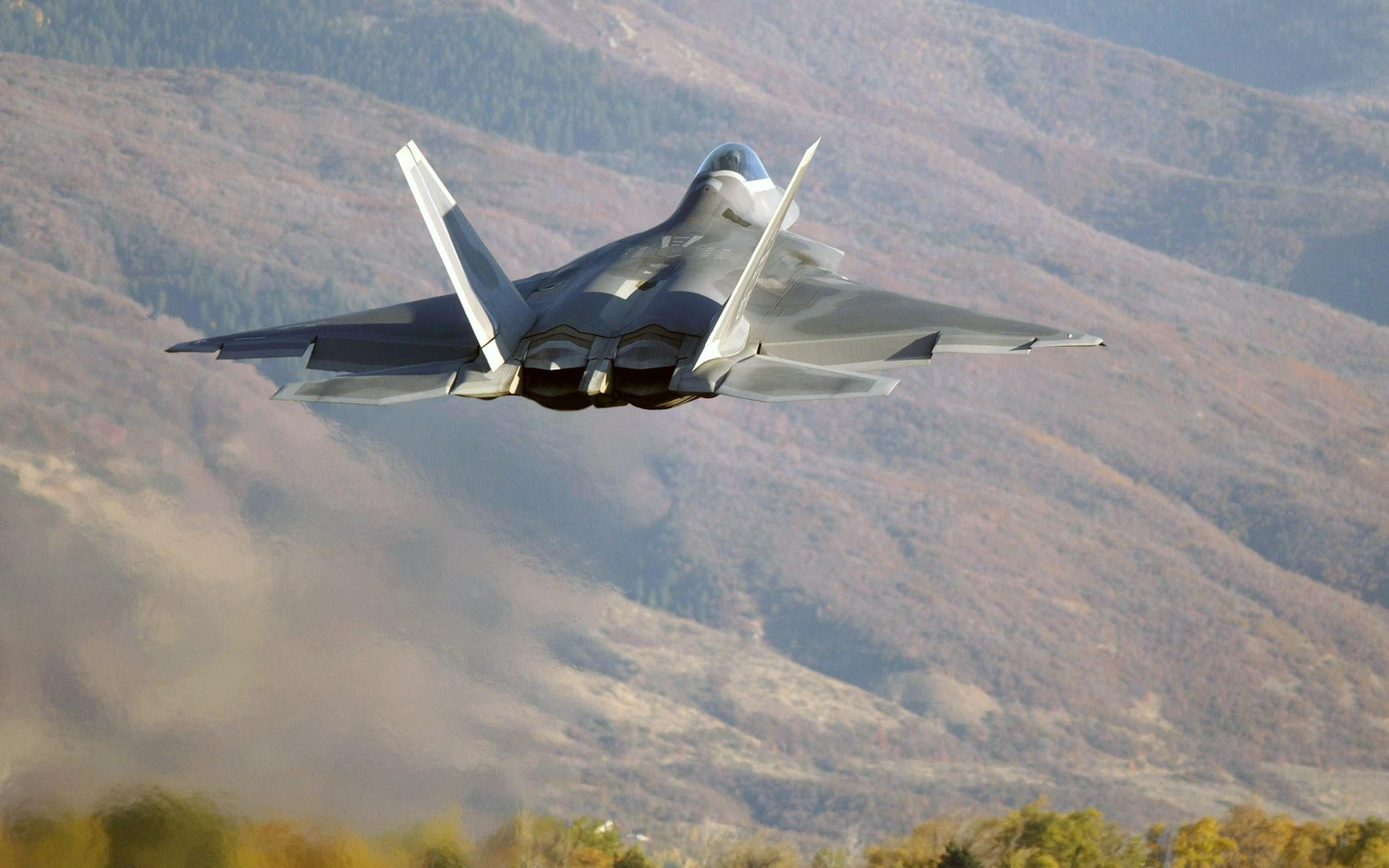 Backgrounds-In-High-Quality-f-raptor-image-by-Prentice-Chester-wallpaper-wpc9002551
