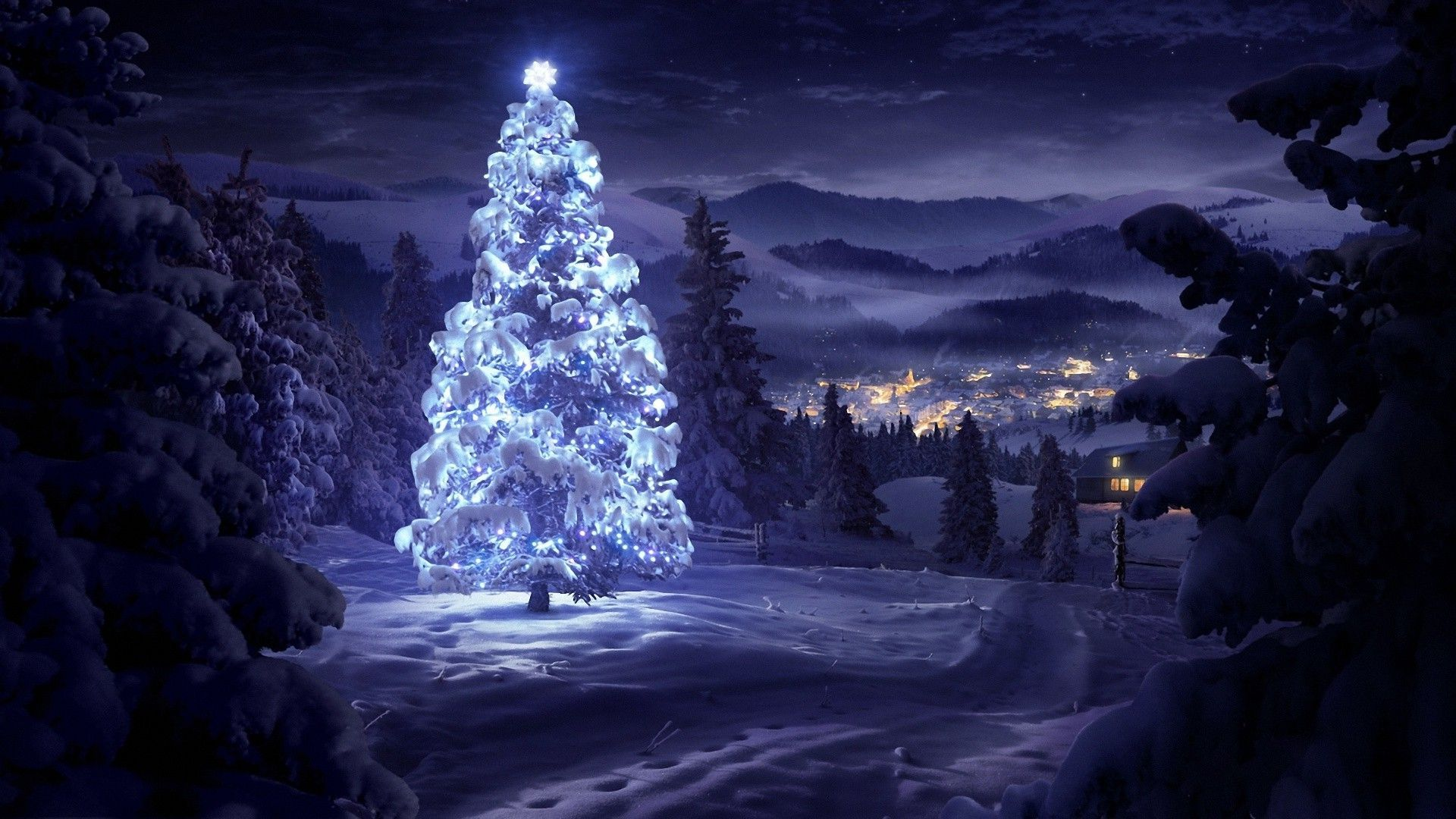 Beautiful-Christmas-tree-wallpaper-wpc9001558