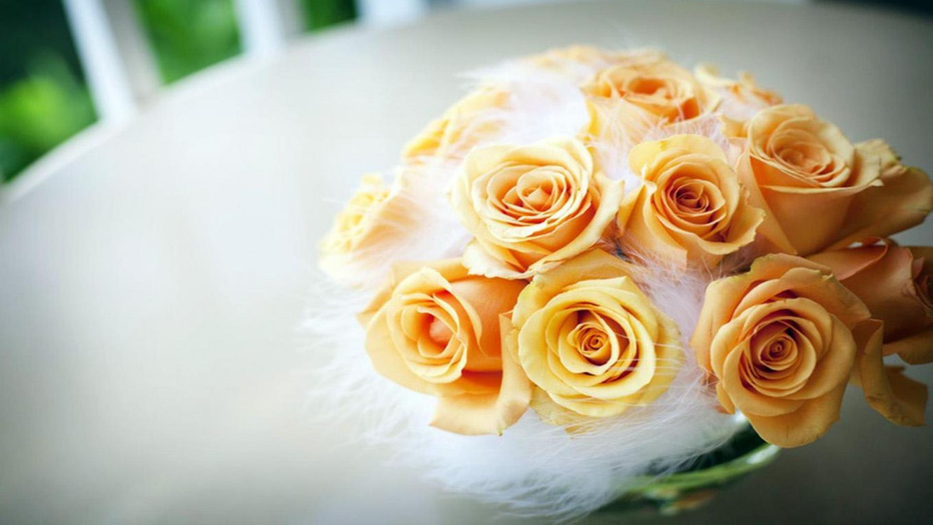 Beautiful-Yellow-Rose-HD-FX-1920×1080-Yellow-Rose-Image-Wallpape-wallpaper-wpc5802696