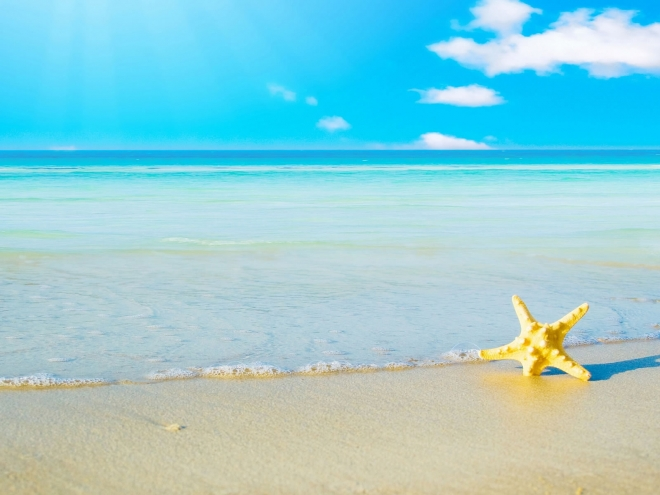 Beautiful-star-fish-sea-beach-sand-Follow-us-www-pinterest-com-webneel-wallpaper-wpc5801450