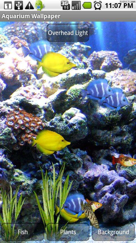 Best-aquarium-and-fish-live-for-Android-Android-Authority-wallpaper-wp3803071