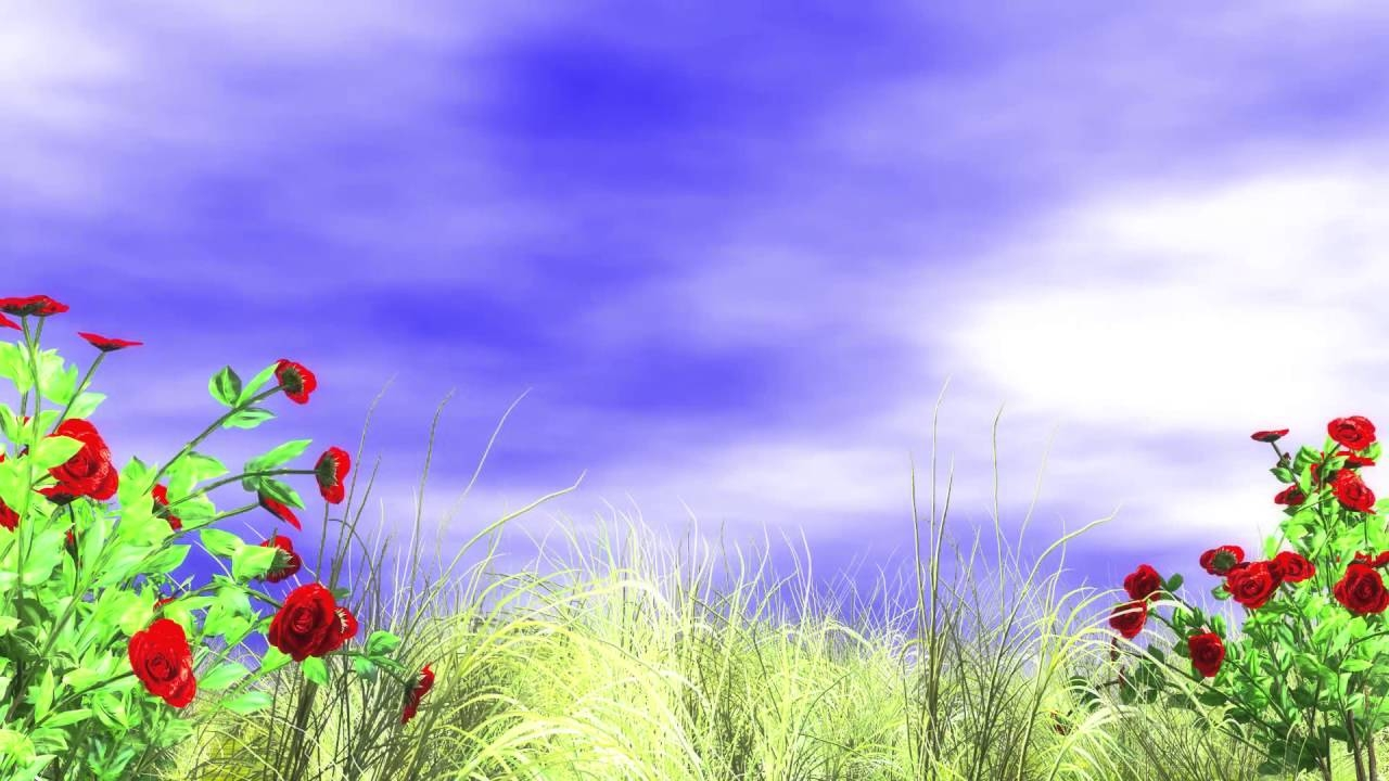 Best-background-images-hd-1080p-free-download-Free-Download-Hd-1080p-Video-Backgrounds-3d-Animat-wallpaper-wpc9002756