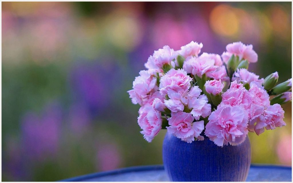 Carnation-Pink-Flowers-In-Vase-carnation-pink-flowers-in-vase-1080p-carnation-wallpaper-wpc9003369