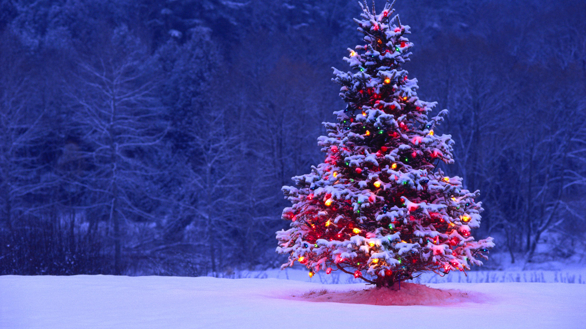 Christmas-Snow-wallpaper-wpc9003537