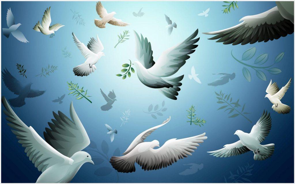 Dove-Birds-Flying-Bird-dove-birds-flying-bird-1080p-dove-birds-flying-bird-wa-wallpaper-wpc9004356