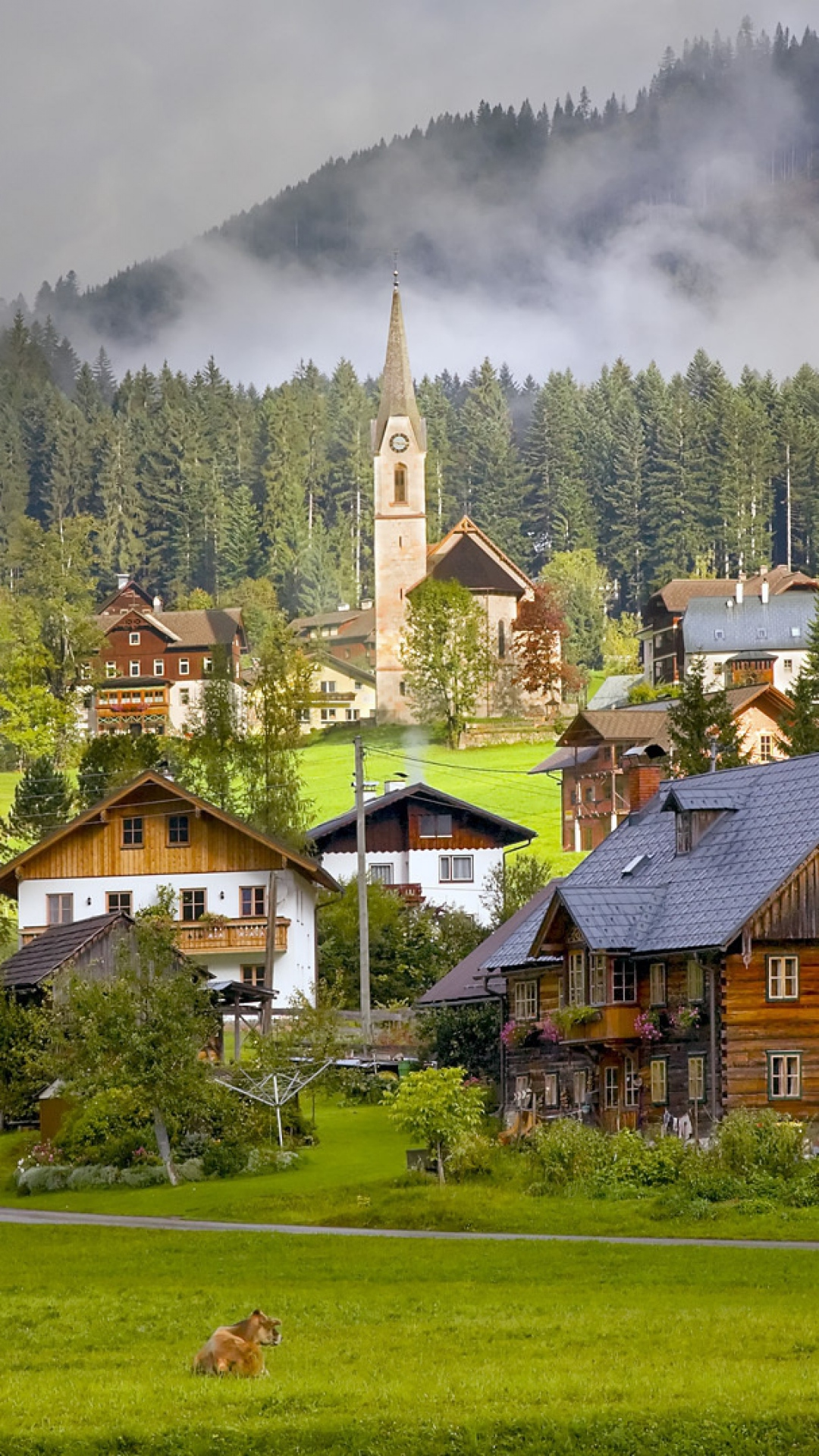 Download-1080x1920-Austria-Gosau-Village-Houses-Cows-Sony-Xperia-Z-ZL-Z-Samsung-Ga-wallpaper-wp3804781