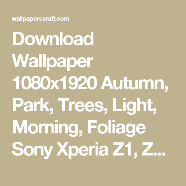 Download-1080x1920-Autumn-Park-Trees-Light-Morning-Foliage-Sony-Xperia-Z-ZL-Z-Sam-wallpaper-wp3605078