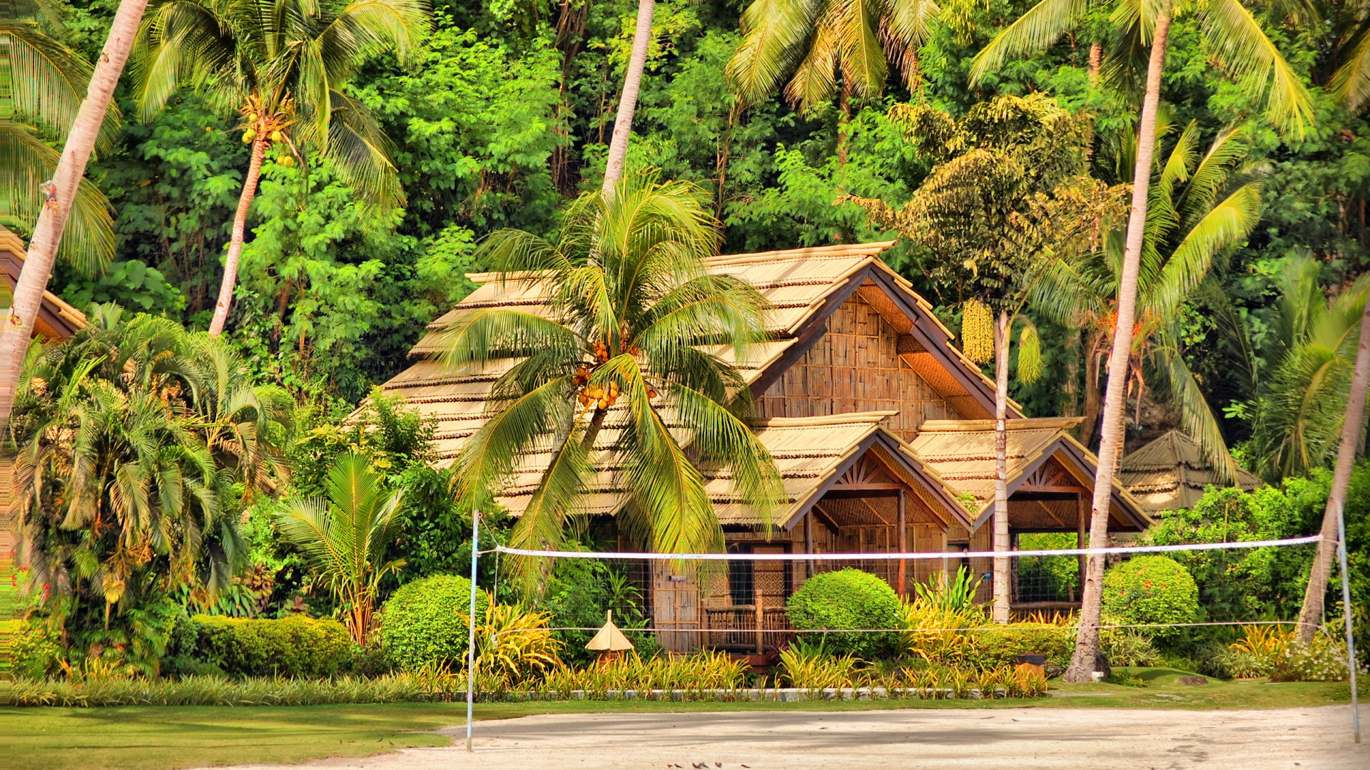Download-house-palm-trees-island-hut-Bungalow-Philippines-Samal-section-Res-wallpaper-wpc5804372