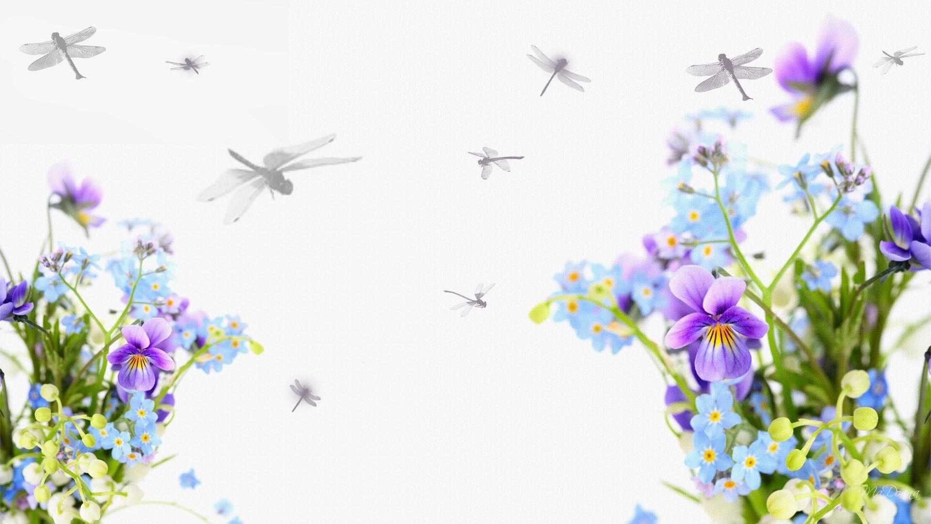 Gaines-Longman-dragonflies-pictures-desktop-1920-x-1080-px-wallpaper-wp3805764