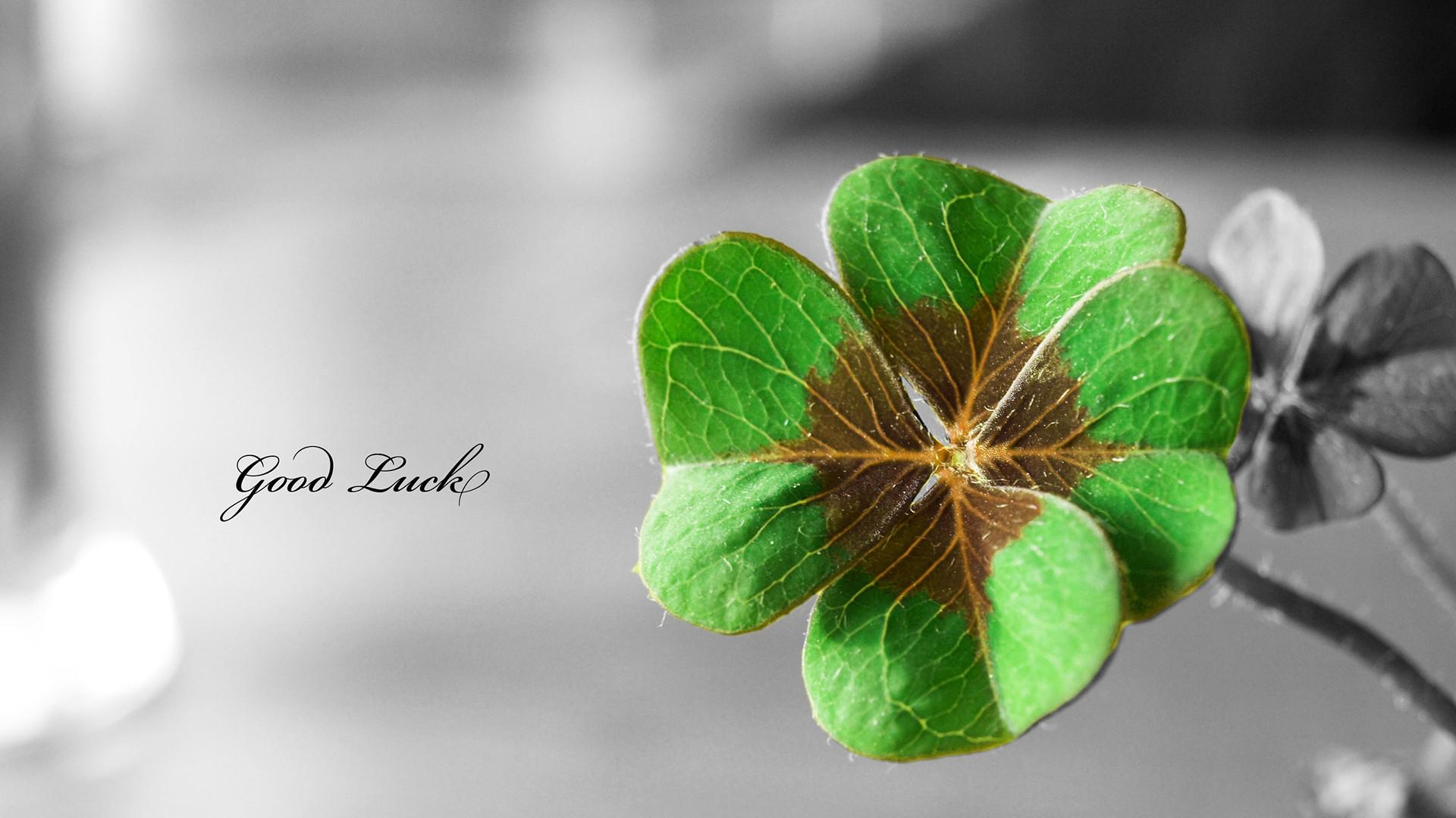 Good-Luck-1920x1080-wallpaper-wpc9005586