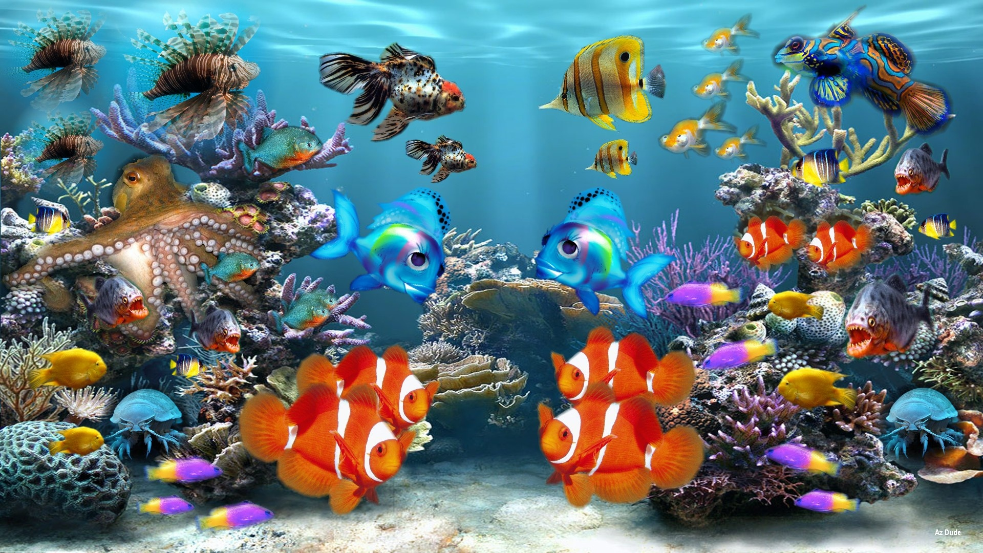 HD-Fish-Find-best-latest-HD-Fish-for-your-PC-desktop-background-mobile-phones-wallpaper-wpc5805740