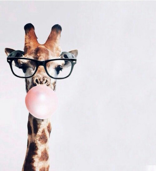Hipster-wallpaper-wpc9006139