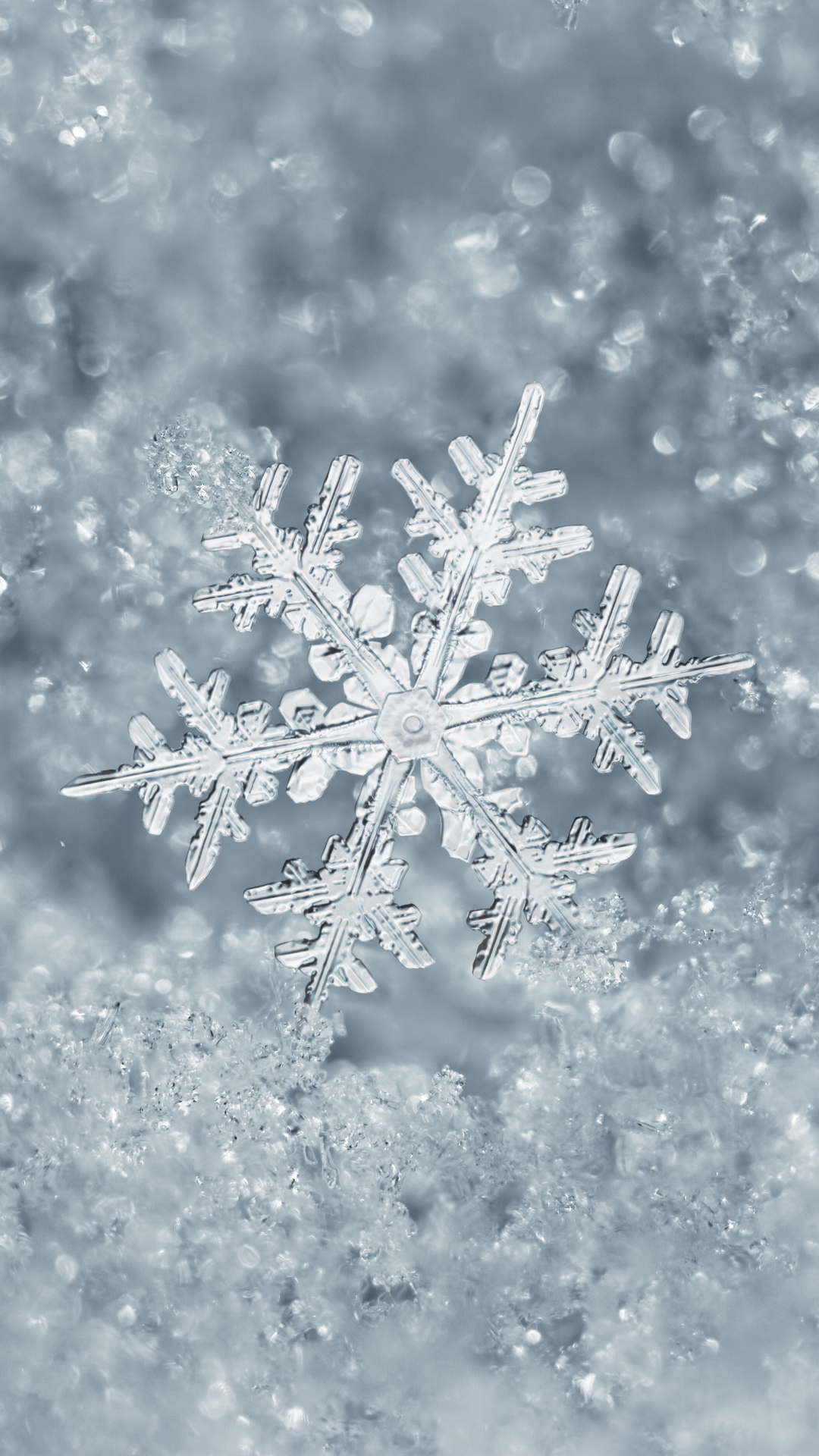 Ice-Snowflake-iPhone-Plus-wallpaper-wpc9006388
