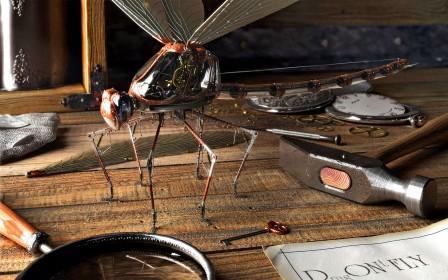 Insect-Robot-Amazing-HD-Hi-Res-Best-User-Deskto-wallpaper-wp3807078