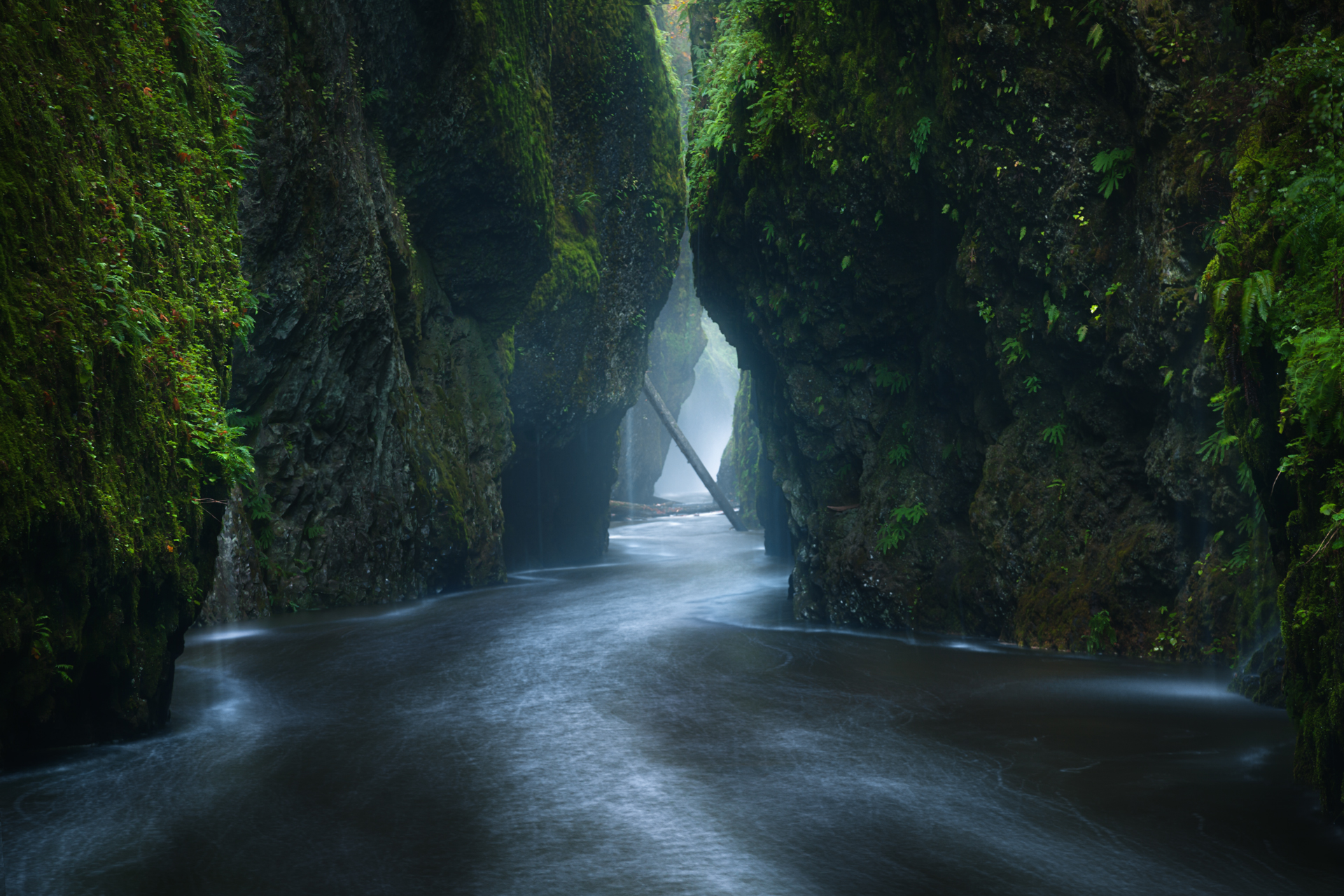 Oneonta-Gorge-located-in-the-Columbia-River-Gorge-region-of-Oregon-after-heavy-rainfall-began-to-hit-wallpaper-wpc5807844