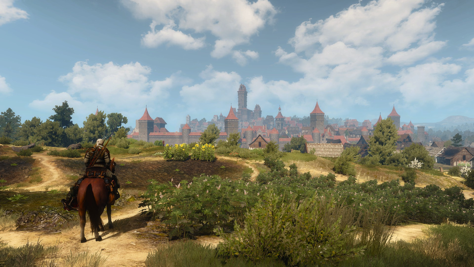 Outskirts-of-Novigrad-The-Witcher-1920x1080-OC-Need-iPhone-S-Plus-Backgroun-wallpaper-wpc5807889