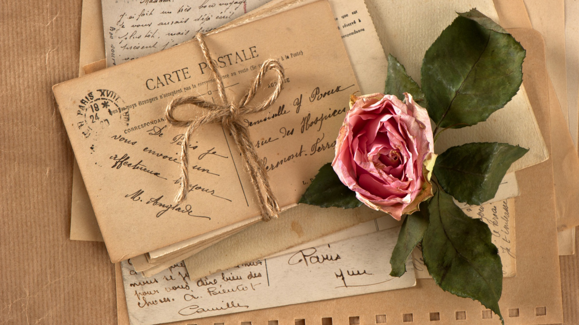 Pink-Rose-With-Love-Letter-Themes-wallpaper-wpc9008523