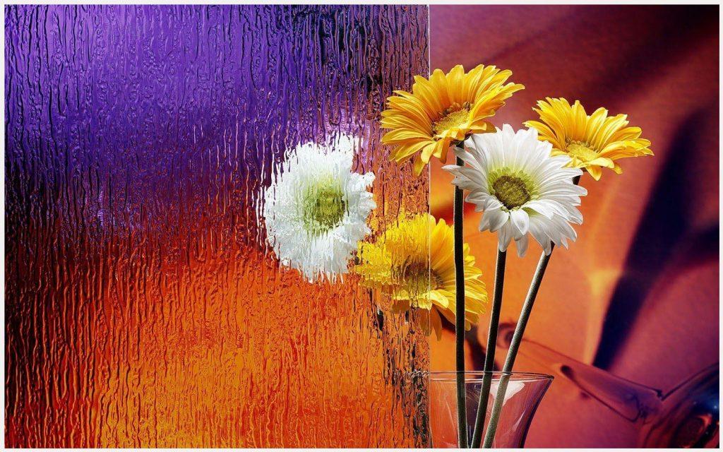 Rain-Effect-On-Colorful-Flowers-rain-effect-on-colorful-flowers-1080p-rain-ef-wallpaper-wpc5808326