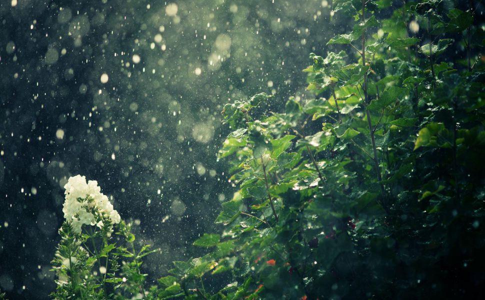 Rain-dark-HD-wallpaper-wpc5808320
