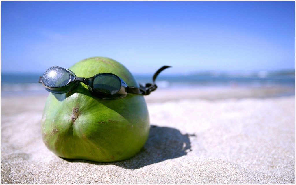 Summer-Fun-With-Coconut-Fruit-Funny-summer-fun-with-coconut-fruit-funny-1080p-wallpaper-wpc9009563