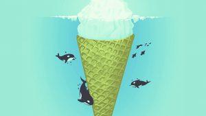 papel de parede orca