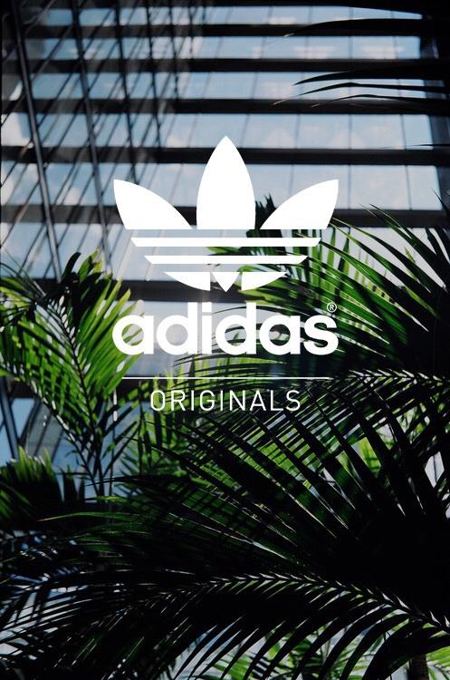 adidas-original-and-image-pinterest-cazsgap-wallpaper-wp3602246