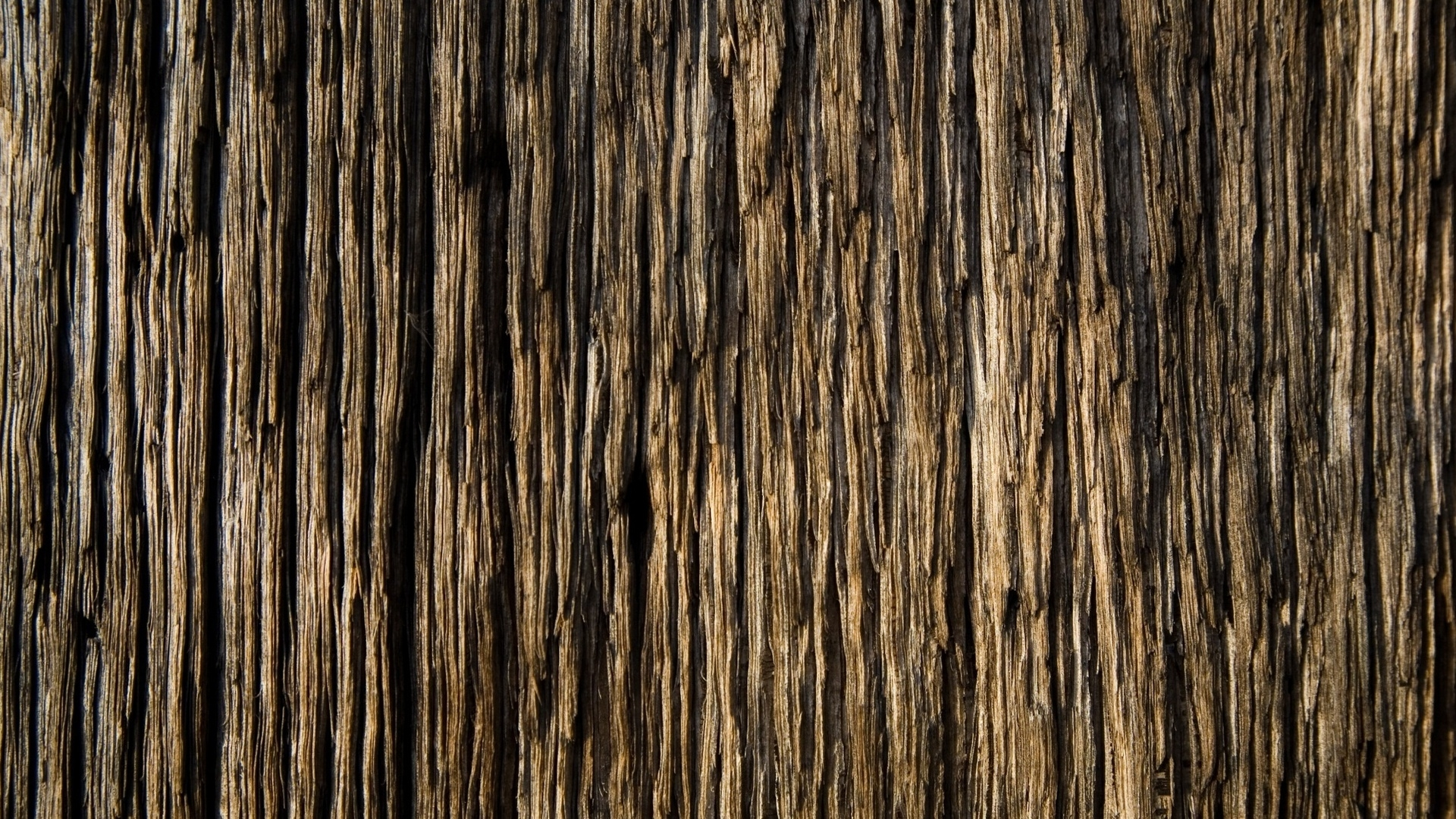 bark-wood-background-http-www-u-org-bark-wood-background-wallpaper-wpc9002589