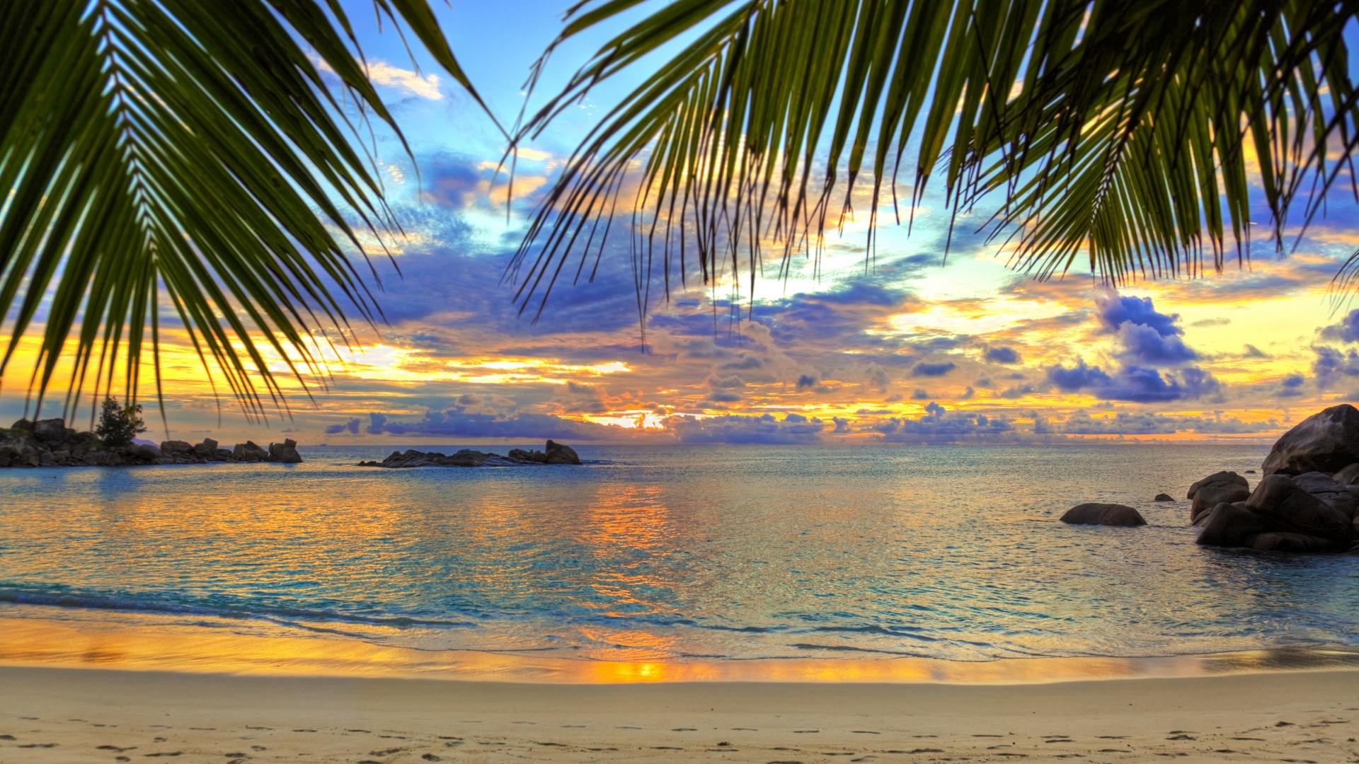 beach-tropics-sea-sand-palm-trees-1920x1080-1920×1080-wallpaper-wpc5802602