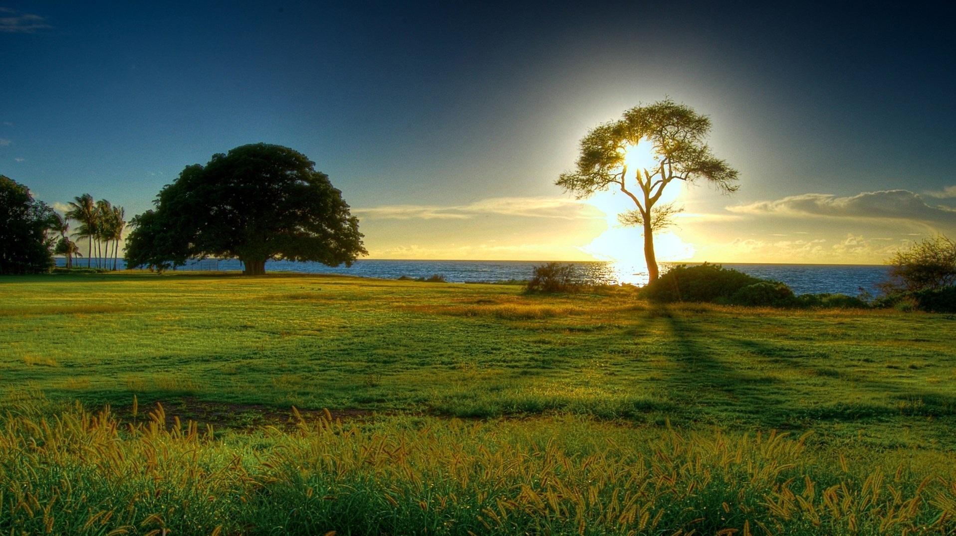 beautiful-nature-background-hd-HD-Nature-Beautiful-Nature-Free-Background-w-wallpaper-wpc5802668