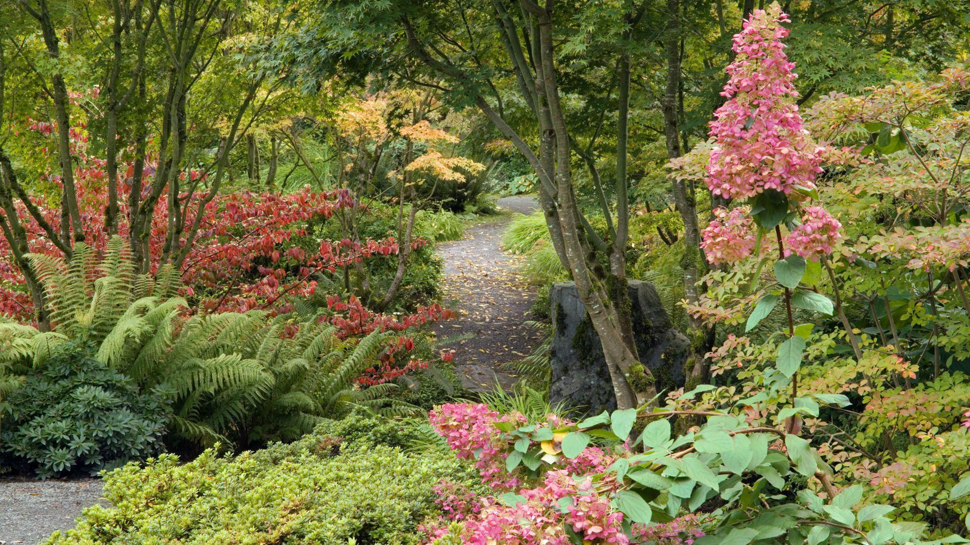 bitch-new-hd-beautiful-gardens-free-1920×1080-wallpaper-wpc5802850