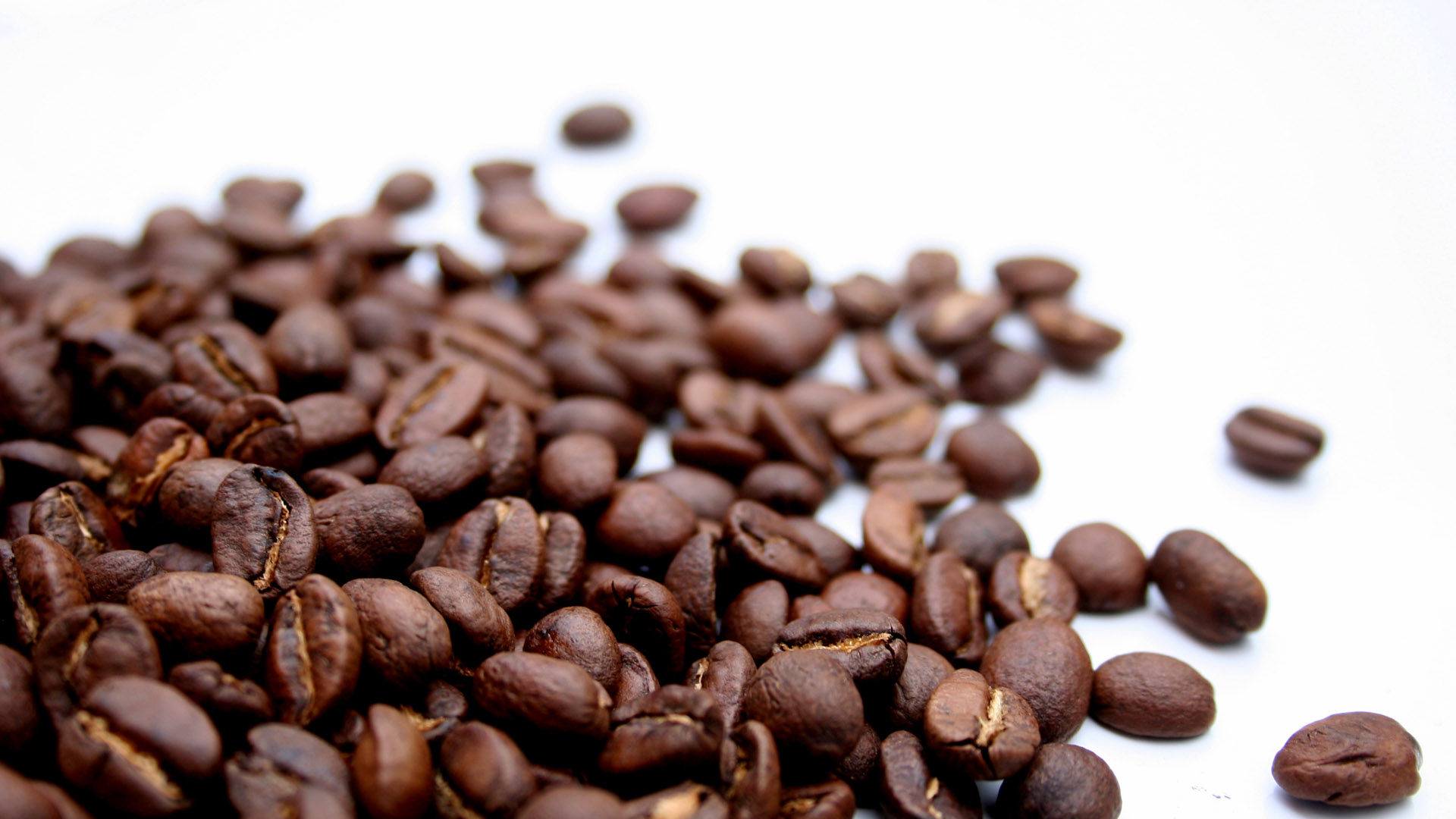 coffee-beans-Google-Search-wallpaper-wpc5803554